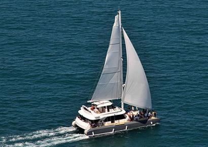 catamaran business day 3