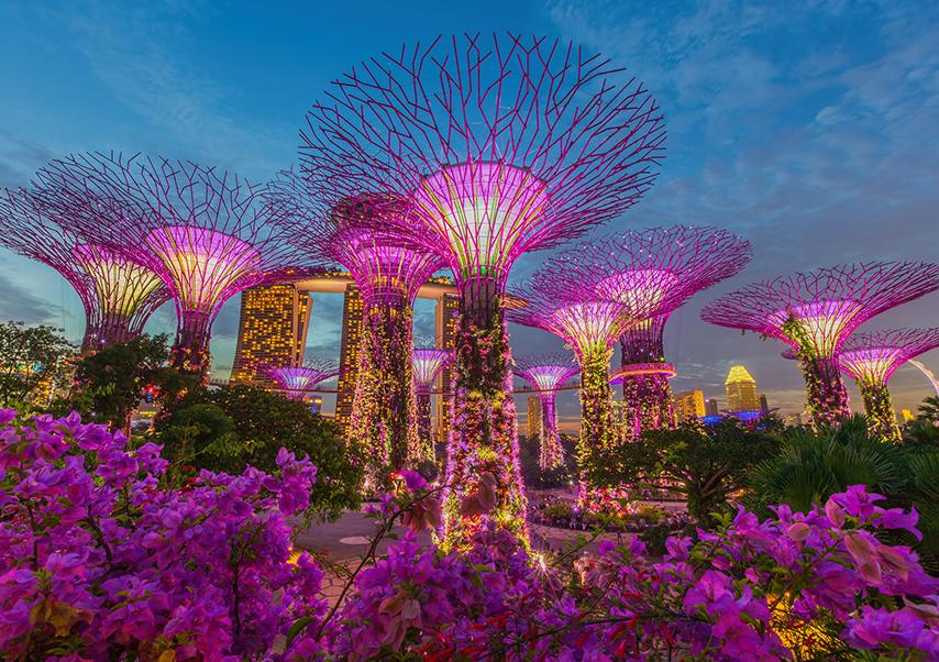 congress singapore gardens