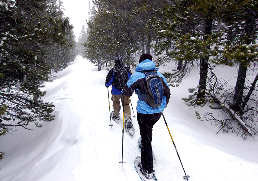 incentive stay pyrenees snowshoes walk