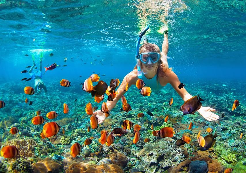 incentive trip thailand snorkelling